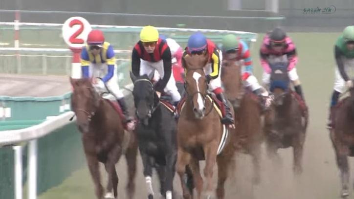 産経大阪杯2013 オルフェーヴル