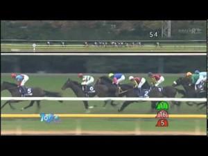 2011 11 27 ジャパンカップ ブエナビスタ レース動画
