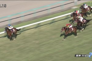 神戸新聞杯2015 リアファル 動画・結果