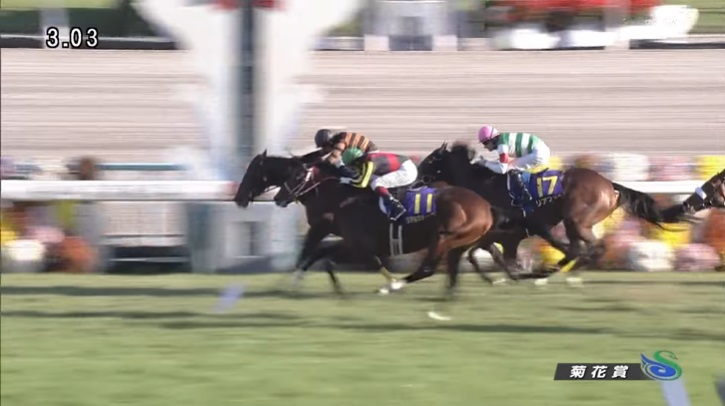 菊花賞2015 キタサンブラック