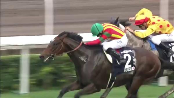 香港マイル 2015 モーリス 動画・結果