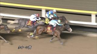 クイーン賞 2015 ディアマイダーリン 動画・結果