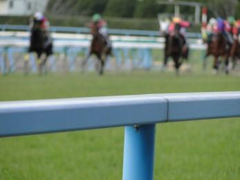 競馬の魅力 アイキャッチ 11