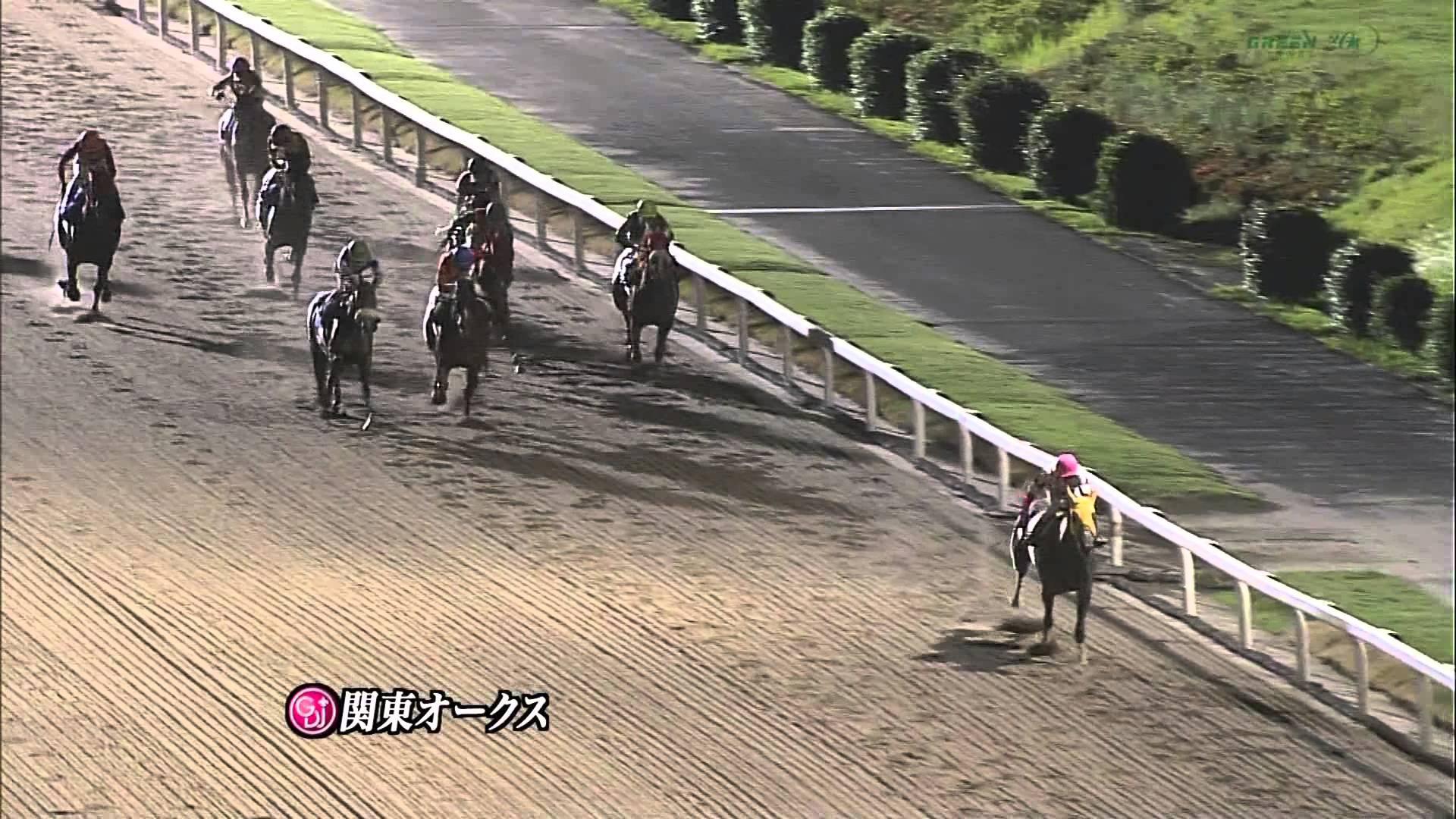 関東オークス 2015 ホワイトフーガ