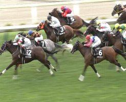 【函館日刊スポーツ杯 2016】動画・結果/ホッコーサラスターがゴール前の激戦を制する