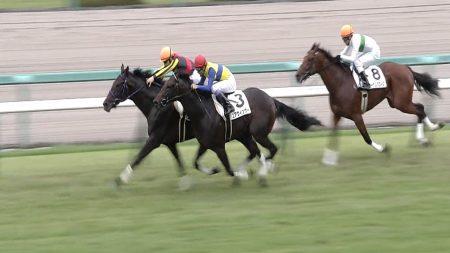 【2歳新馬戦】動画・結果/ムーヴザワールドが良血馬対決を制する