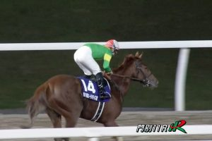 【エーデルワイス賞 2016】動画・結果/リエノテソーロが5馬身差で圧勝