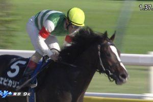 【プラタナス賞 2016】動画・結果/エピカリスが7馬身の差をつけ圧勝