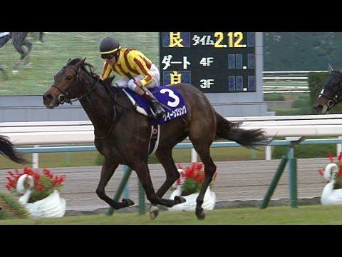 【エリザベス女王杯 2016】動画・結果/クイーンズリングが馬群を捌いて差し切る