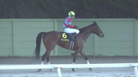 名古屋グランプリ 2016 アムールブリエ