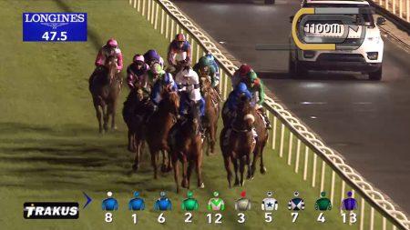 【ドバイターフ 2017】動画・結果/ヴィブロスが優勝し日本馬の連覇達成