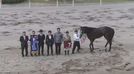 兵庫チャンピオンシップ 2017 タガノディグオ