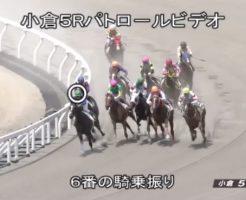 浜中俊騎手・騎乗停止 2017年8月12日