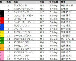 新潟記念 2017 枠順