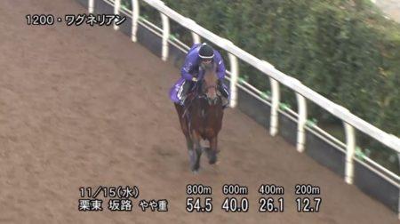 東京スポーツ杯2歳ステークス 2017 追い切り