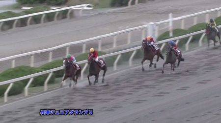 兵庫ジュニアグランプリ 2017 ハヤブサマカオー