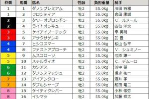 朝日杯フューチュリティステークス 2017 枠順