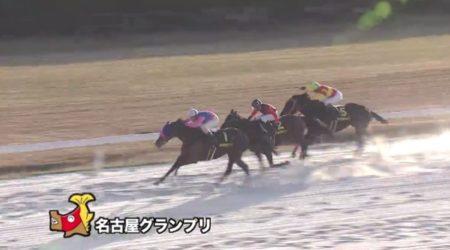 名古屋グランプリ 2017 メイショウスミトモ
