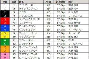 チャンピオンズカップ 2017 枠順