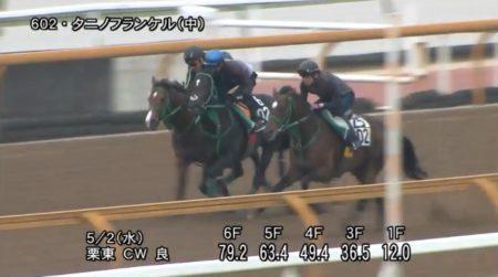 京都新聞杯 2018 追い切り