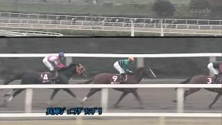 兵庫ジュニアグランプリ 2012 ケイアイレオーネ
