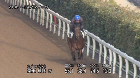 京都牝馬ステークス2019 追い切り