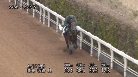 福島牝馬ステークス2019 追い切り