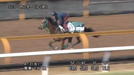 阪神牝馬ステークス2019 追い切り