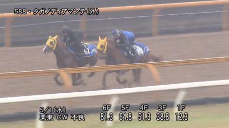 京都新聞杯2019 追い切り