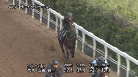 神戸新聞杯2019 追い切り
