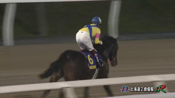 北海道2歳優駿2019 キメラヴェリテ