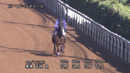 富士ステークス2019 追い切り
