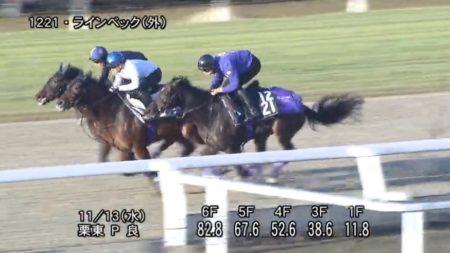 東京スポーツ杯2歳ステークス2019 追い切り