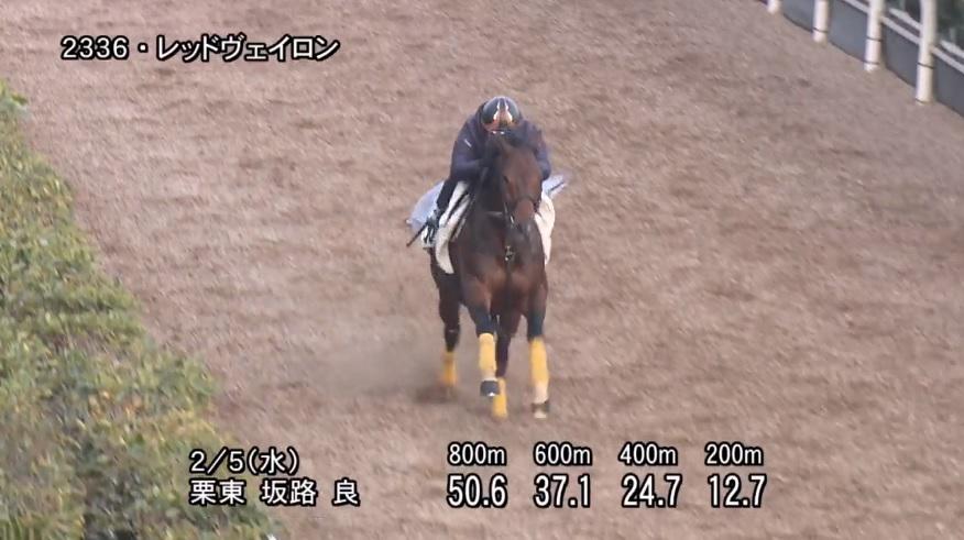 東京新聞杯2020 追い切り