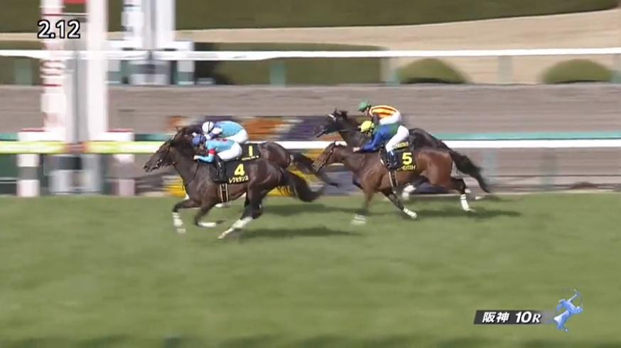 すみれステークス2020 レクセランス