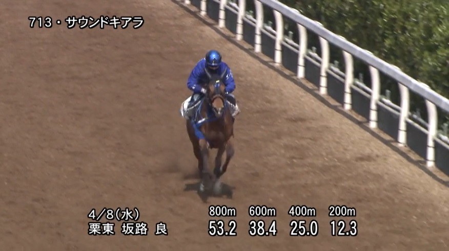 阪神牝馬ステークス2020 追い切り