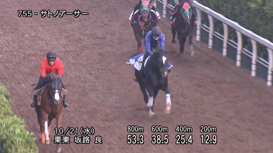 富士ステークス2020 追い切り