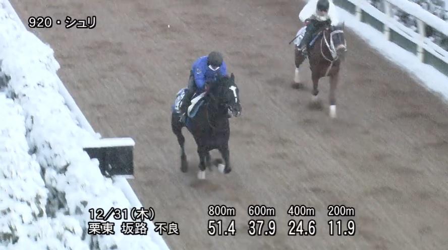 京都金杯2021 追い切り
