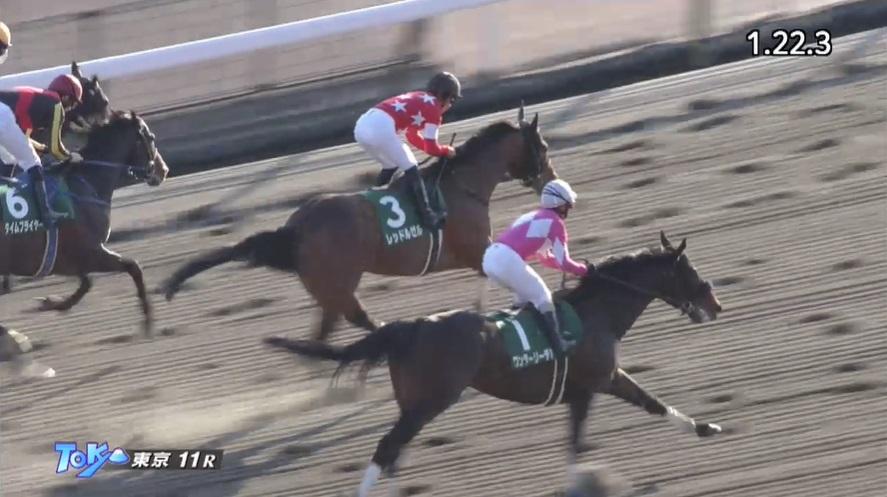 根岸ステークス2021 レッドルゼル