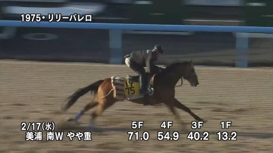 京都牝馬ステークス2021 追い切り