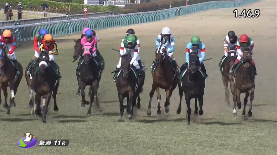 福島牝馬ステークス2021 ディアンドル