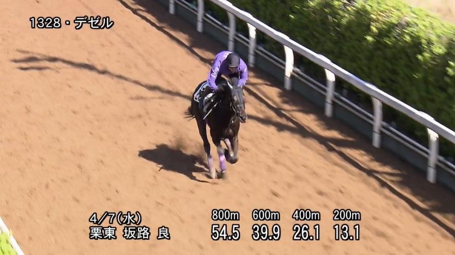 阪神牝馬ステークス2021 追い切り