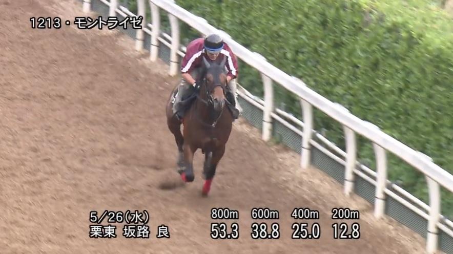 葵ステークス2021 追い切り